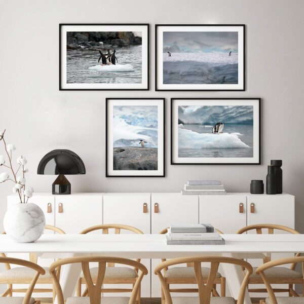 "Paper prints ""Penguin Stories #1"", ""Penguin Stories #2"", ""Penguin Stories #3"" and ""Penguin Stories #4"" by Alexander Perov framed in black aluminium shown in the interior."