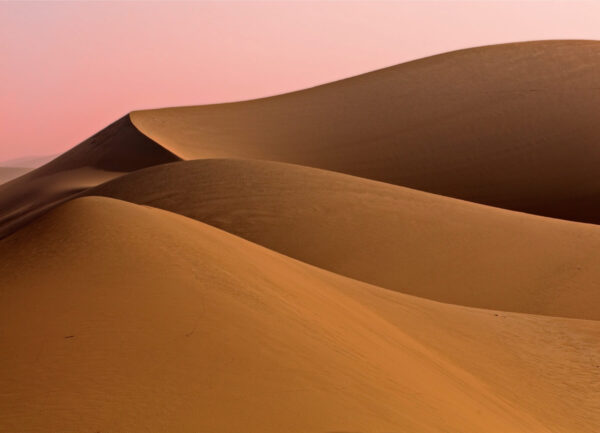 """""""Pride"""" Artwork is a colour photograph of a desert with a pink sky on the background. Art print available in different mediums."""