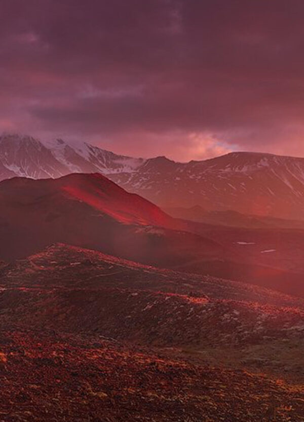 """""""Dawn of Fire"""" Artwork zoomed to the mountain and the flower field. This art print is a panoramic work."""