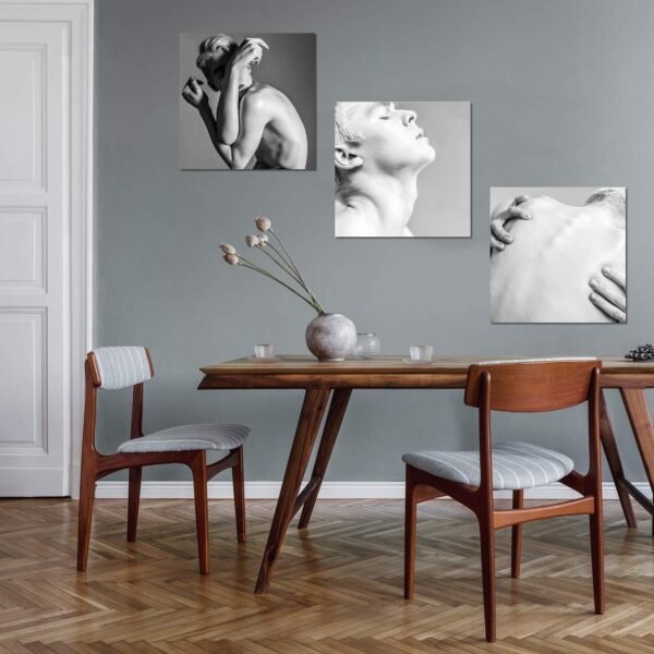 "Paper prints from the series ""Sensuous"" by Michael Balaev mounted on aluminium shown in the interior."