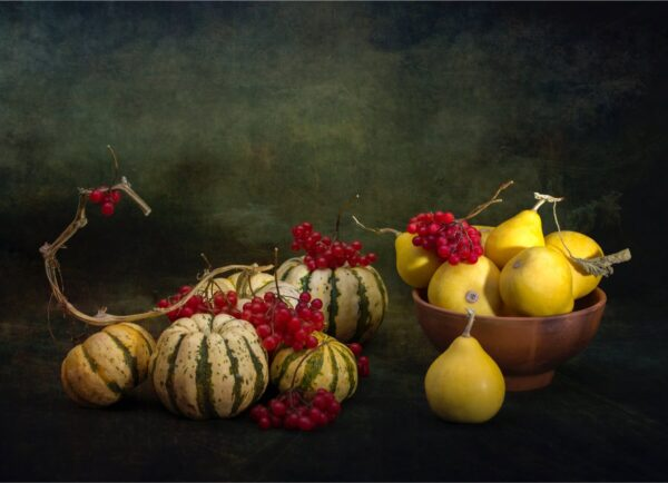 """""""Pumpkins and Berries"""" Artwork is a still life colour photograph of pumpkins, berries and pears. Art print available in different mediums and sizes."""